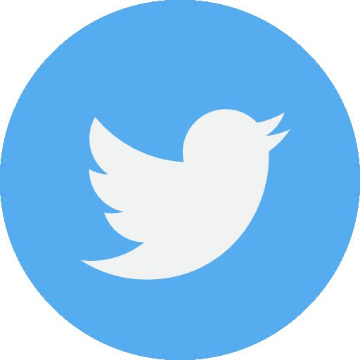 twiter icon